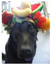 Jamoka as Carmen Miranda in a broadway production