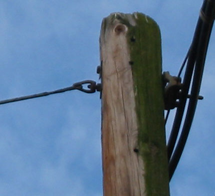 Detail showing it is a cable and not an electrical wire
