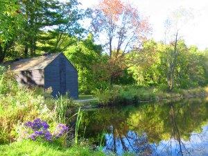 Then walked around the pond...